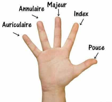 fingers-french