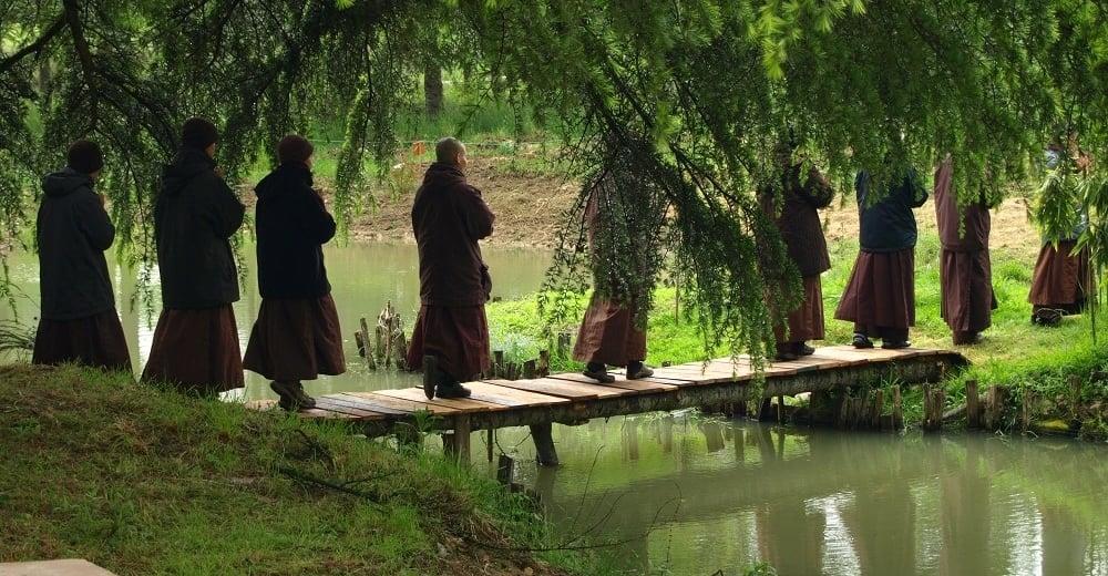 buddhist meditation in France