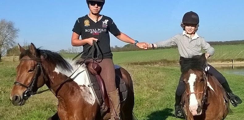 horseback riding french vocabulary3