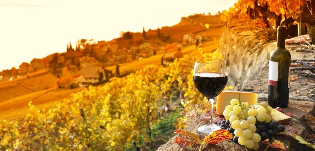 lavaux wine switzerland french practice